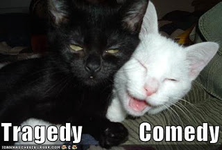 funny-pictures-black-cat-white-cat