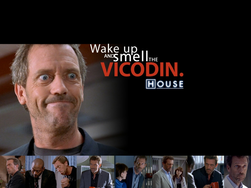 dr house hugh laurie house md 1024x768 w