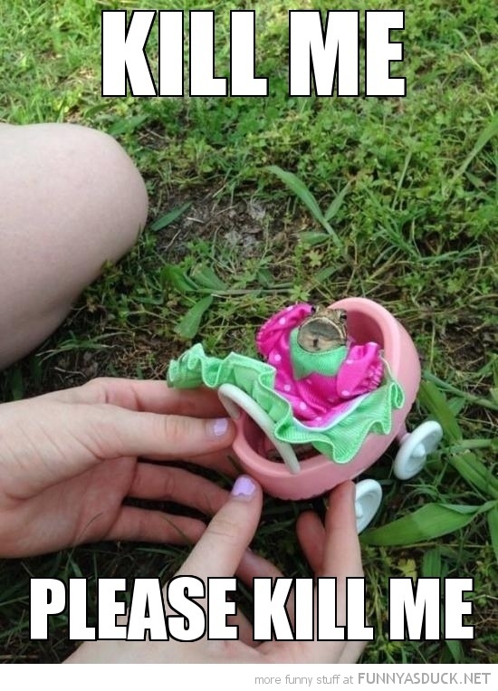 funny-frog-dress-toy-pram-kill-me-pics