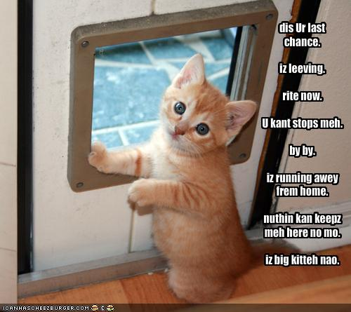 t2Y3FlZ funny-pictures-your-kitten-threatens-to-