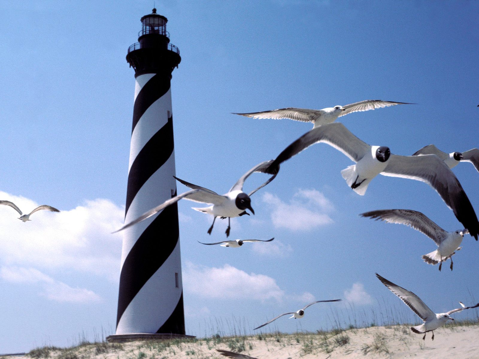 t2a7KPn Cape Hatteras Lighthouse North Carolina