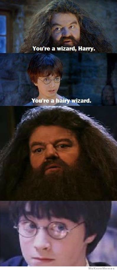 youre-a-wizard-harry