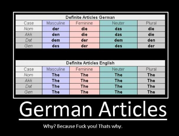 german-articles-because-fuck-you-thats-w