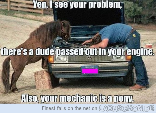 106777 your mechanic is a pony