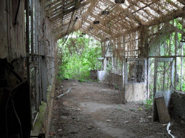 verlassene orte schleswig holstein