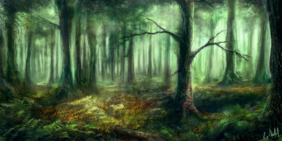 forest by rambled-d5ol502