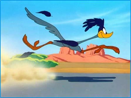 road-runner-1.jpeg