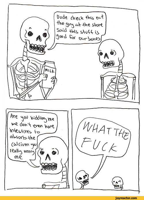joke-skeletons-wtf-1080452.jpeg