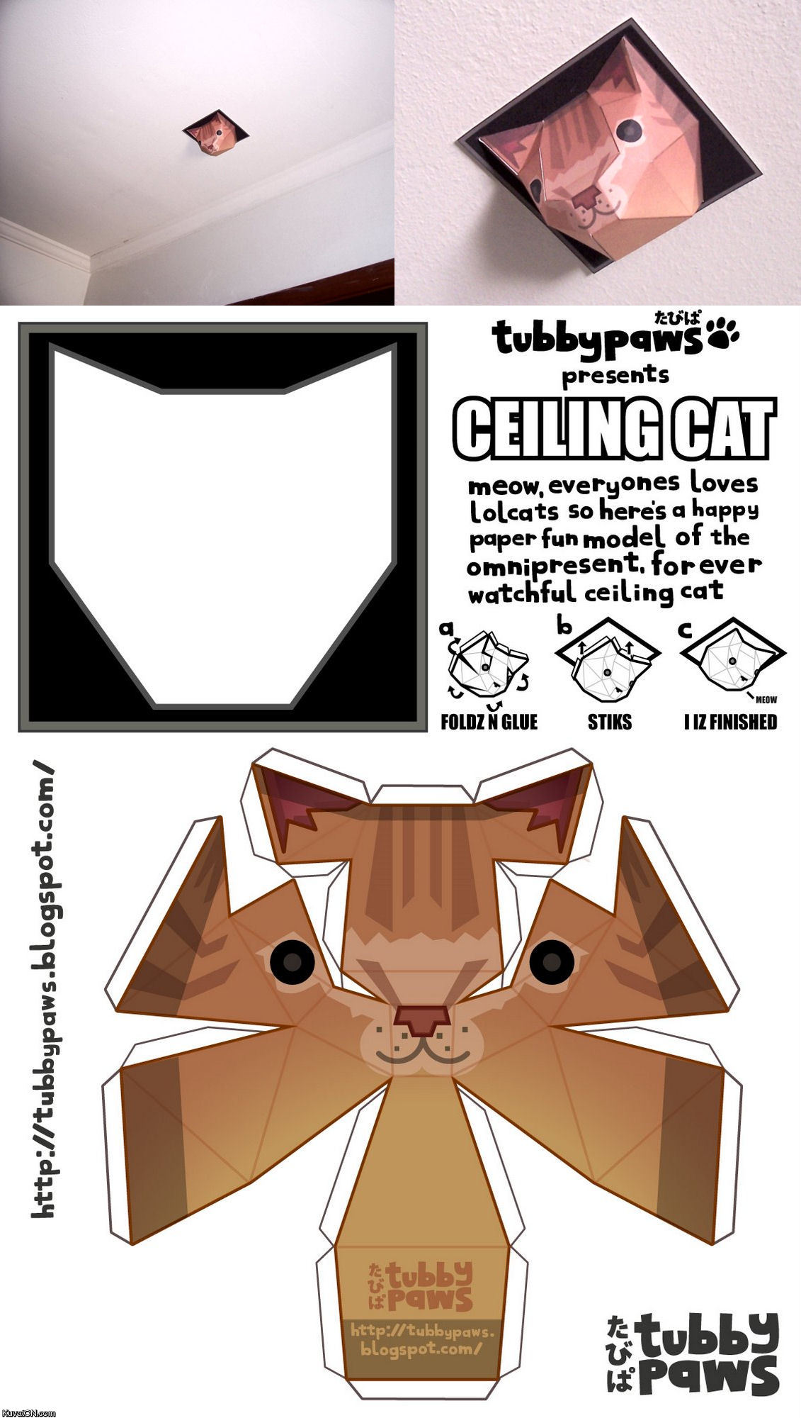 t3Kkso4 ceiling cat is watching you