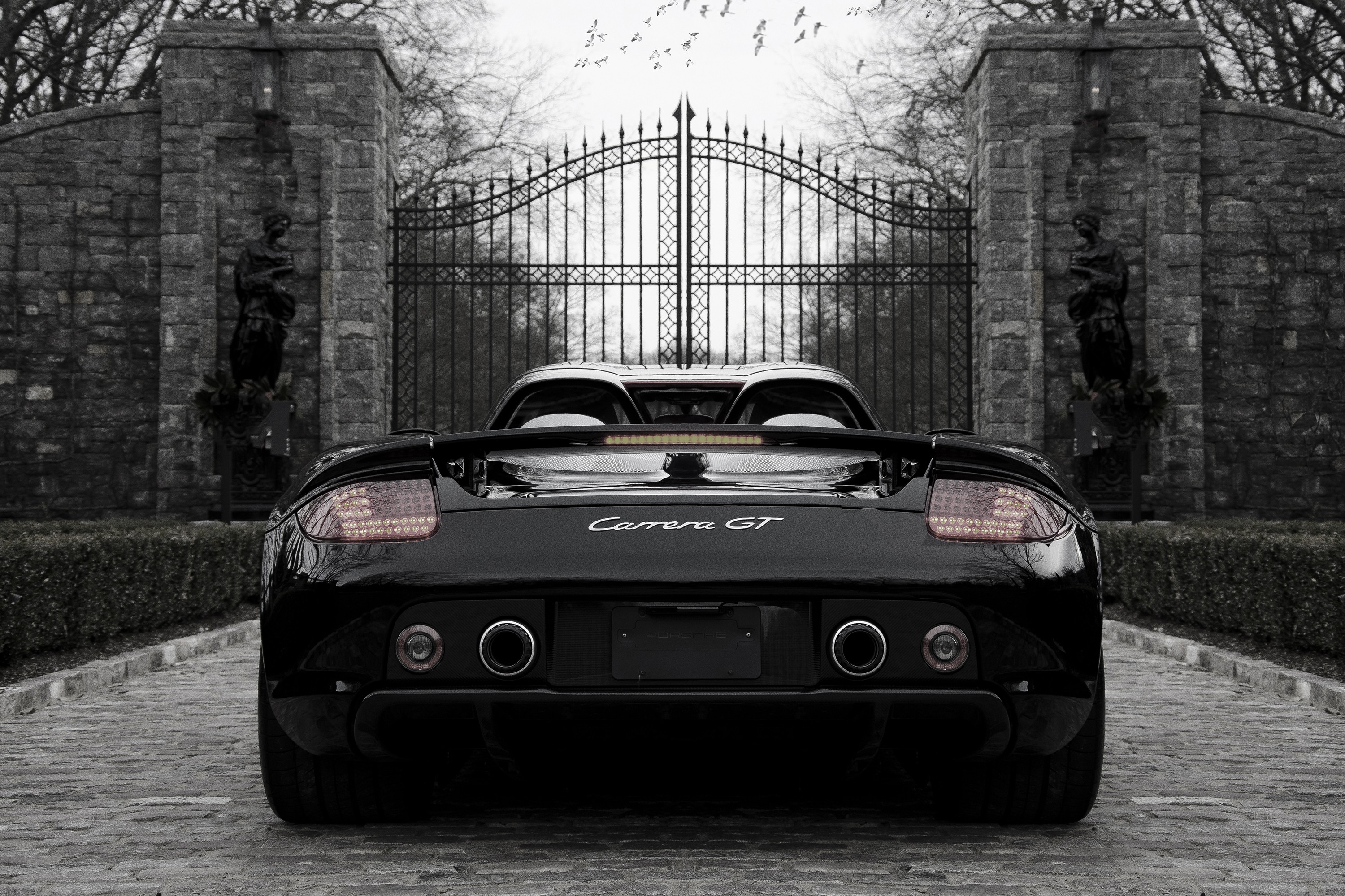 Porsche-Carrera-Gt-Sports-Car-Black-And-