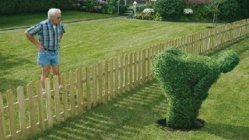 Funny-landscaping-by-a-friendly-neighbor
