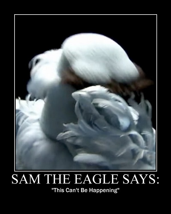 sam the eagle facepalm by madhog-d4f66tt
