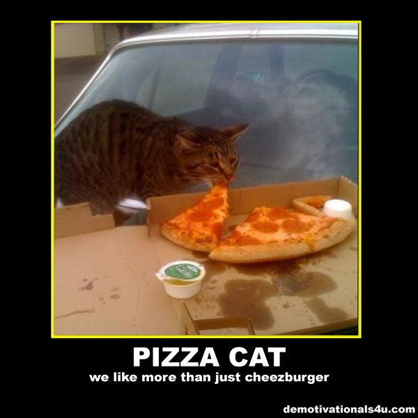 pizza-cat