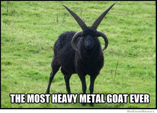 heavy-metal-goat