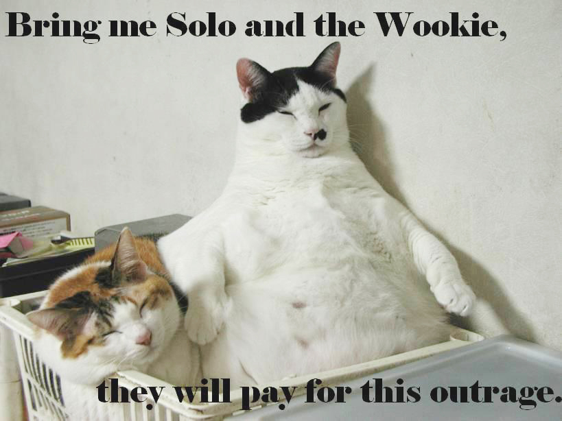 star wars solo wookie