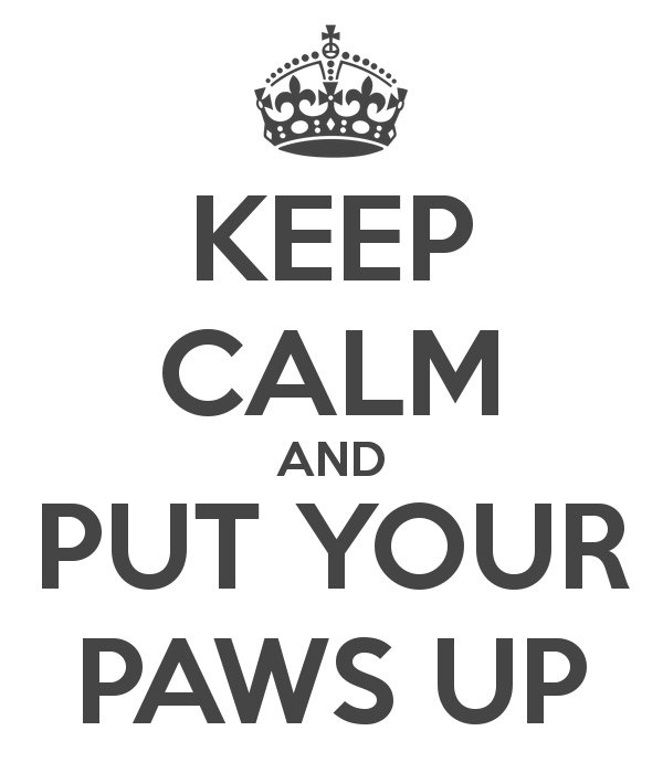 keep-calm-and-put-your-paws-up-39