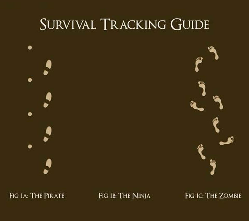 ae9912 Tracking Guide 243