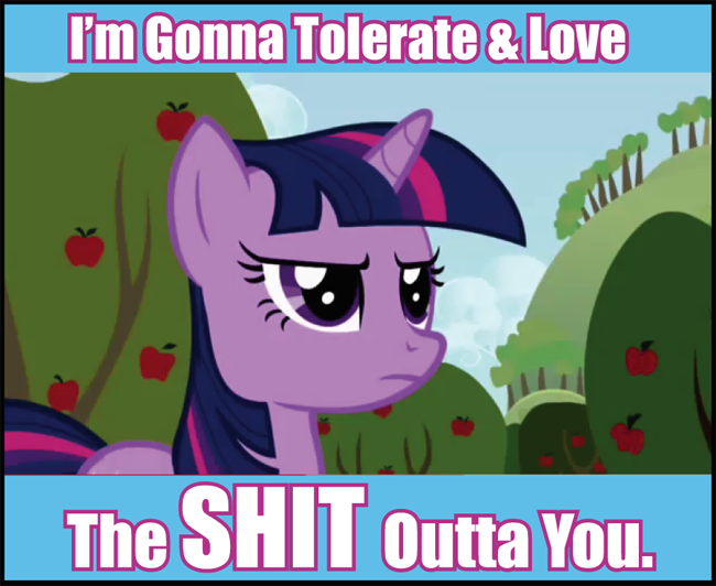 pony-tolerate-and-love