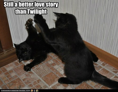 t6SMqtx funny-pictures-still-a-better-love-story
