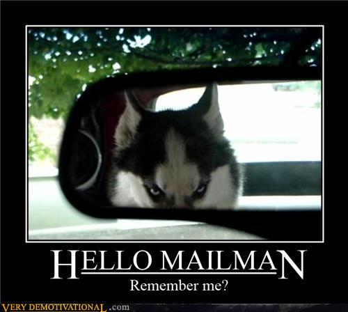 demotivational-posters-hello-mailman