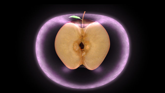 http://www.allmystery.de/i/t70dfae_the_torus___apple_by_ocelot0-d57lpuk.jpg