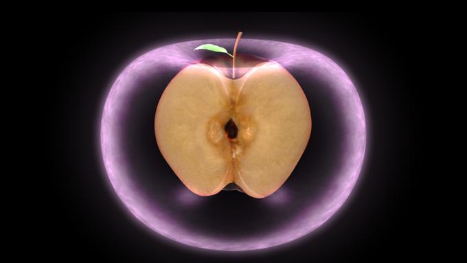 http://www.allmystery.de/i/t70dfae_the_torus___apple_by_ocelot0-d57lpuk.jpg