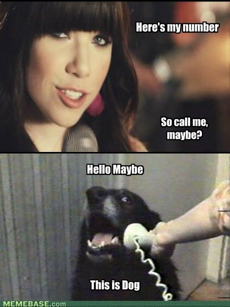 hello-yes-this-is-dog-phone-call-me-mayb
