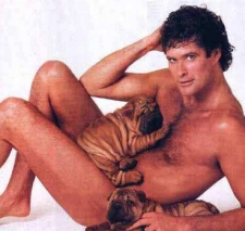 The-Hoff-Had-the-Chance-to-Do-It-with-Pr