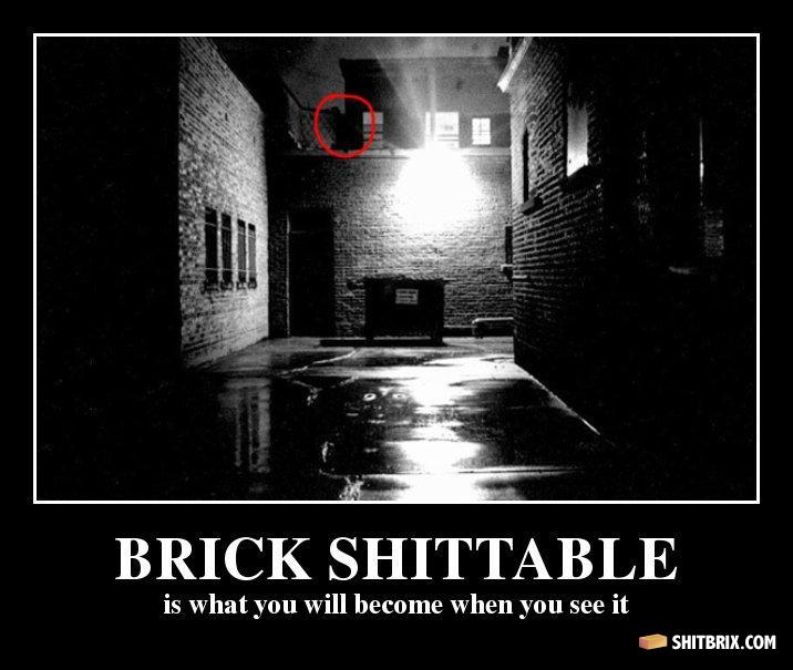 dafuq-brick-shittable-is-what-you-will-b