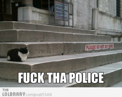 cat-says-fuck-the-police-5349