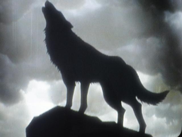 heulender wolf gezeichnet