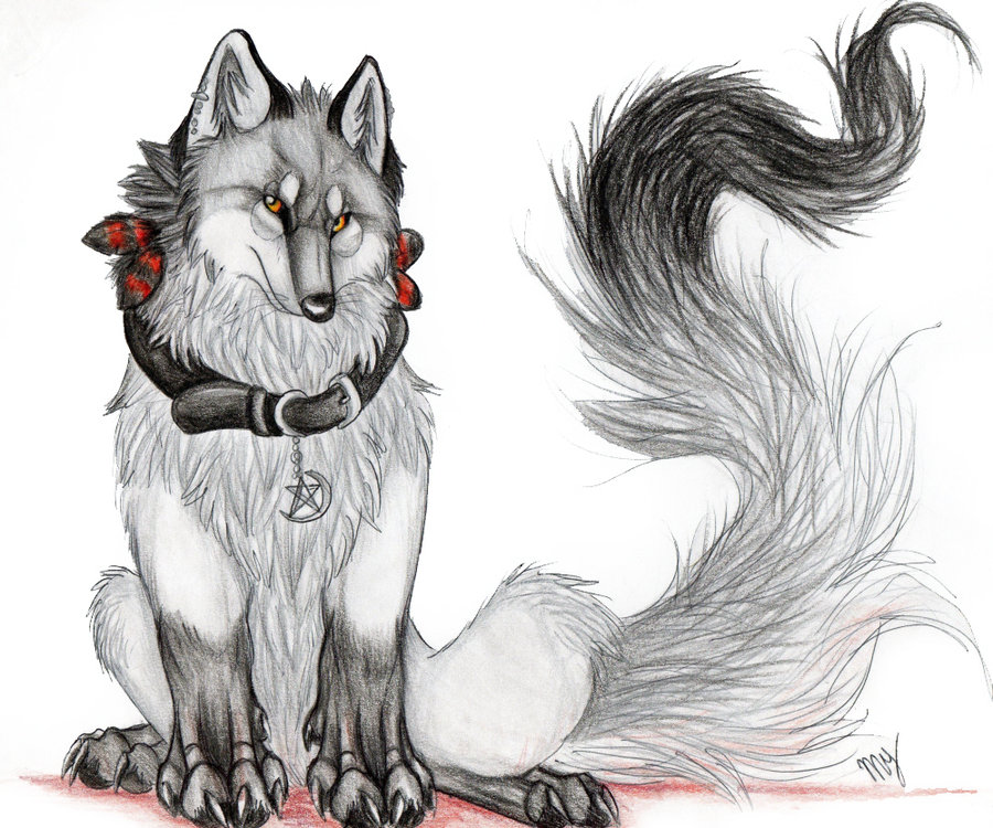 seras  dark shadow wolf by suenta deathg