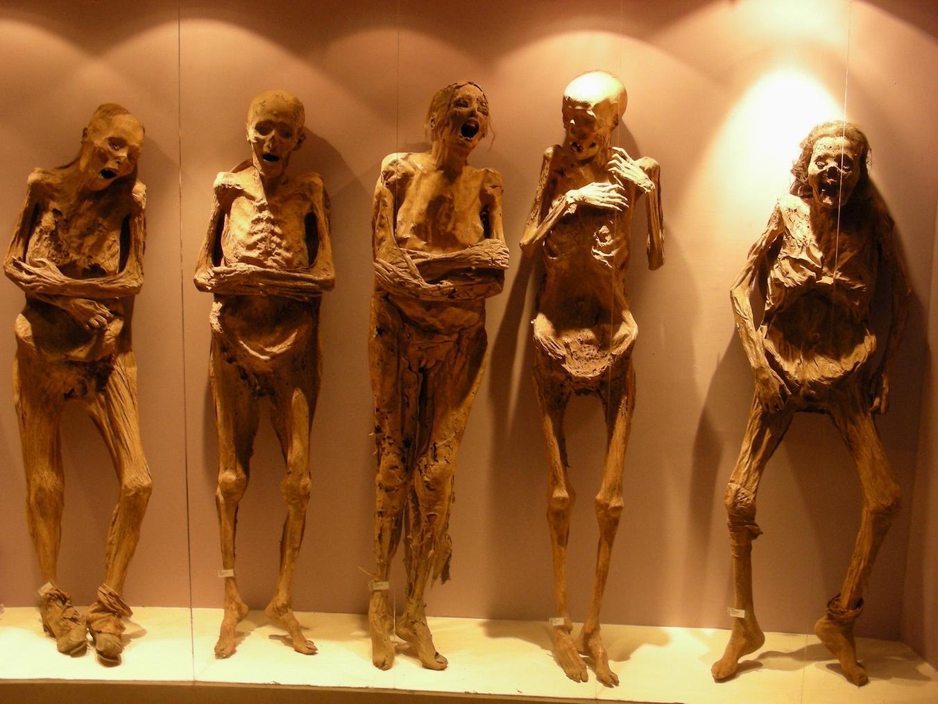 lebende mumien mönche