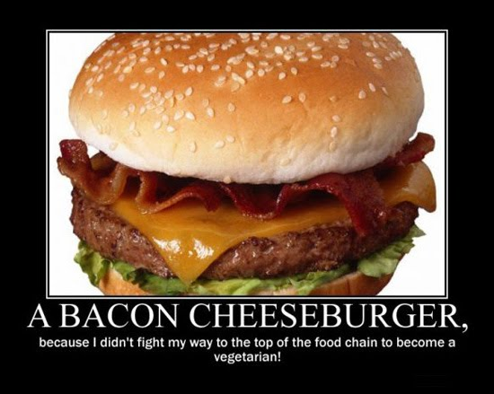 tB0Nc03 a-bacon-cheeseburger-because-i-didn-39-t