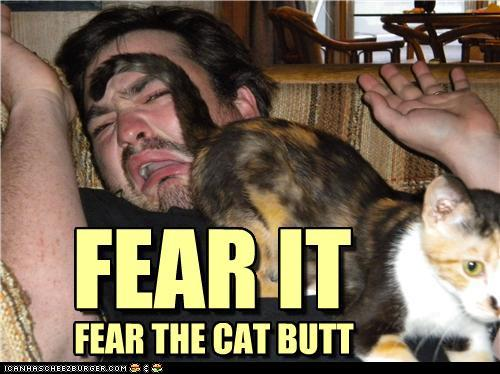 tC7RiP5 funny-pictures-fear-it