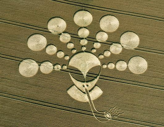 tE08KoG crop circles alien