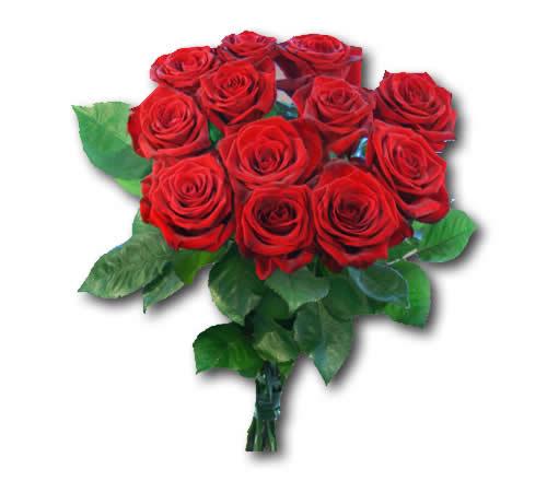 Rote Rosen Spiele