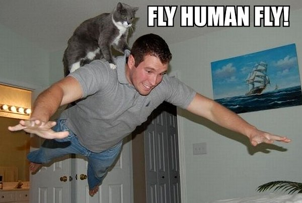 tFcRTEy fly-human-fly