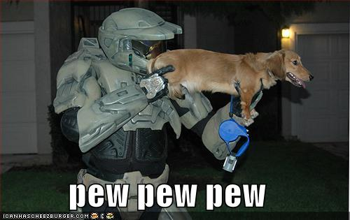 tG9DEsn funny-pictures-halo-dog-pew