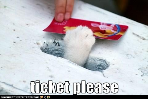tHKY7lA funny-pictures-ticket-please