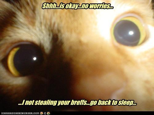 tIWD1cv funny-pictures-shhh-is-okay-no-worries