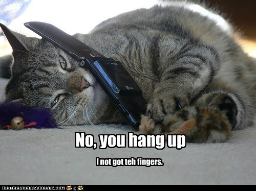 tJI9Pzv funny-pictures-no-you-hang-up