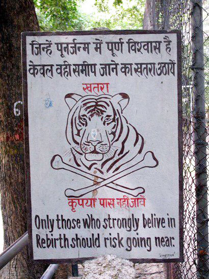 tKv9tXm funny-India-sign-tiger-rebirth