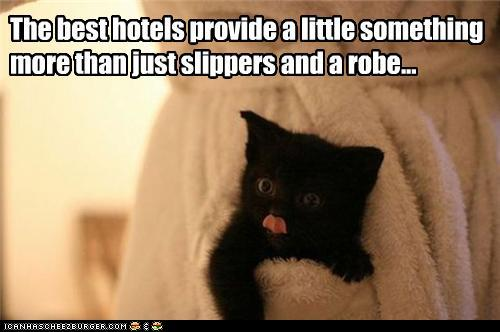 tLYPelX funny-pictures-the-best-hotels-provide-a