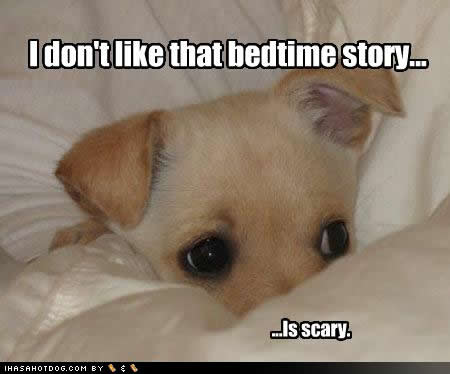 tMOHgED cute-puppy-pictures-story-scary