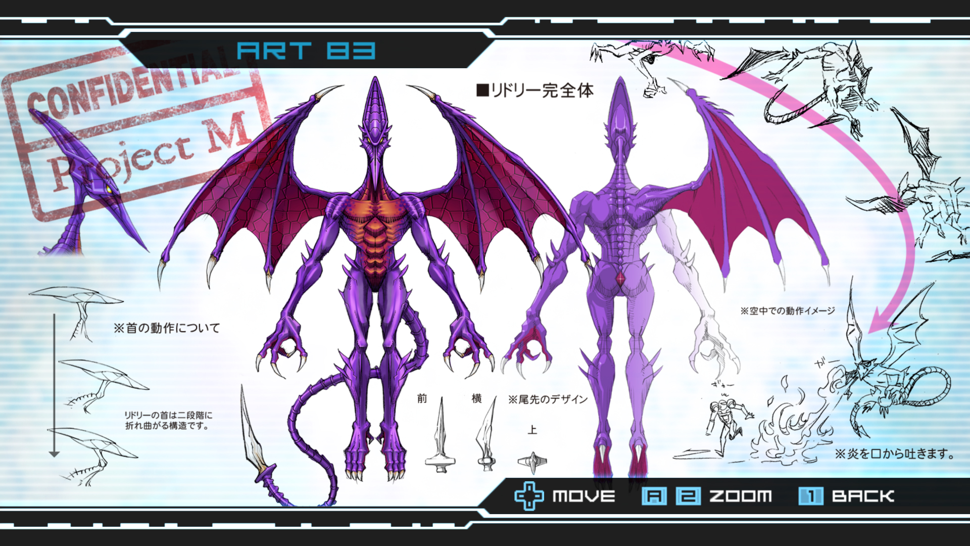 tO8g1C7 Adult Ridley