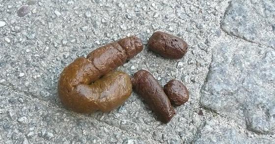 Kakwurst