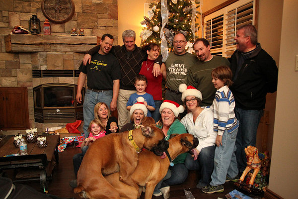 tUDqikM dogs-photobomb-christmas-family-photo