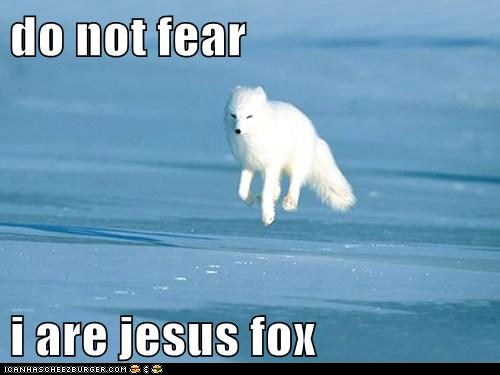 tY93WqW funny-pictures-do-not-fear-i-are-jesus-f