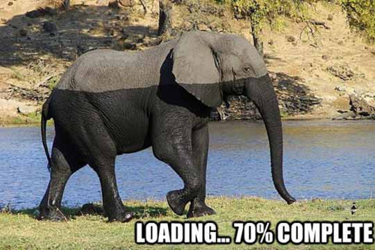 taAcbGD loading